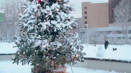 snow covered spruce : Christmas tree outdoors under the snow. Blurry lights of a garland focusing at the end of the footage. City holiday decorations. Snowfall in the city. Stock Footage