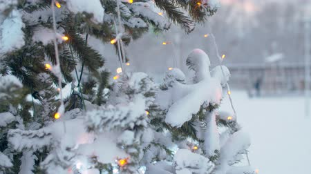 tűlevelű : Close up branches of Christmas tree outdoors under the snow. Flickering lights of a garland. City holiday decorations. Snowfall in the city. Steadicam shot
