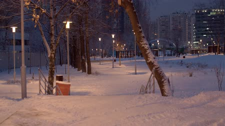 birch : Snow covered city park in the evening. Light of lanterns, luminous windows in the houses. Winter cityscape. Unrecognizable people walking on the background