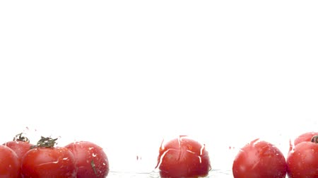 plash : Close up tomatoes falling into the water on white background. Water drops on the glass and tomatoes. Slow motion
