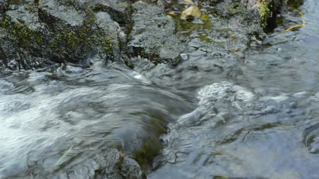 rzeka : Clear flowing water from river stream. Seamless loop full hd 1920x1080 footage.