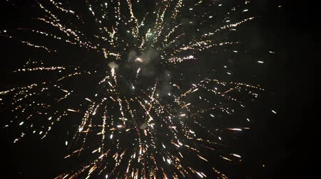 fogo de artifício : Merry Christmas and Happy New Year real fireworks celebration background loop clip.