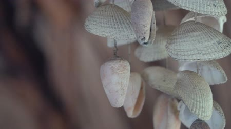 zapékat : Wind chime made of sea shells and ocean oysters on blurred background. Relaxing beach decoration souvenir on tropical vacation, slow motion footage. Dostupné videozáznamy