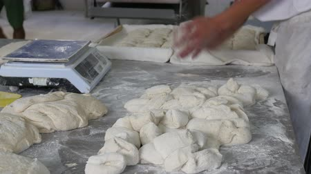 piekarz : Baker shaping dough into buns in industrial bakery Wideo