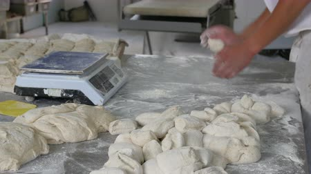 bakery : Baker forming dough into buns in industrial bakery