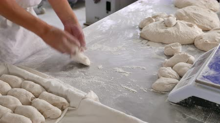 hamur : Baker preparing uncooked dough ready for baking as rolls Stok Video