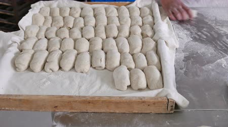 bandeja : Baker preparing fresh dough ready for buns Stock Footage