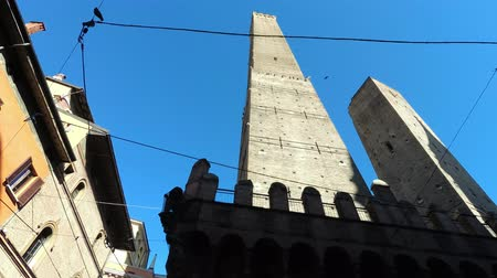 donkeys : View of the famous medieval towers, Asinelli and Garisenda, famous all over the world.