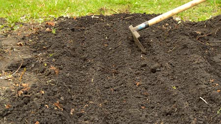 ancinho : Preparation of beds for planting vegetables, loosening the soil with a rake. Preparation of soil in early spring for a good harvest