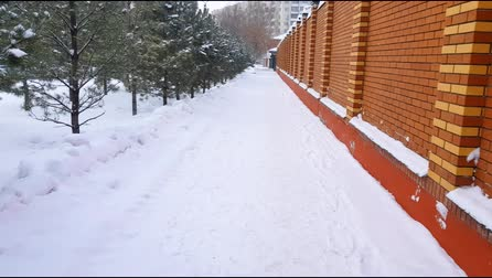 surroundings : Snow-covered alley along planted spruce trees and modern beautiful brick wall during snowfall in winter, 4K camera movement