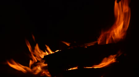 fireside : Live fire from a fire, burning wood in the dark, night shooting in the open, sparks from a yellow flame, red embers Stock Footage