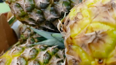 Background pineapple exotic fruit texture close-up 4K 30fps UltraHD resolution rolling focus, slow motion, top view
