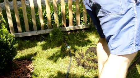 A man farmer in shorts with bare legs is digging a hole on a green lawn for planting trees in the garden with a shovel. The gardener sticks a shovel in the ground and leaves, the sunlight bright