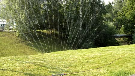 Watering the green lawn in the Park in summer on a Sunny day, water is sprayed in the form of a fan, against the background of trees, HD video