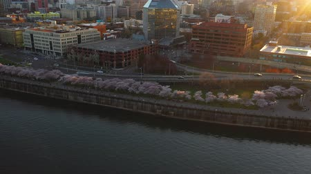 travelling : Luchtfoto dolly schot over de Willamette rivier richting het centrum van Portland Oregon waterkant in het voorjaar wanneer Cherry tree bloeit in bloei.