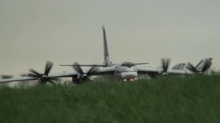 bomber : Bomber taxis in the grass