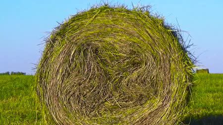 bales : Haystack in the field
