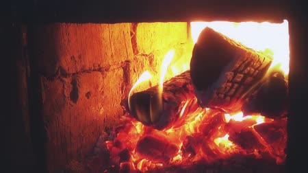hearth : Wood burning in the oven