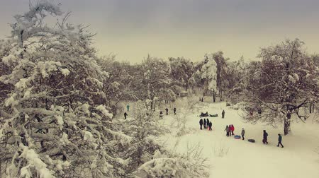People walk through the winter forest