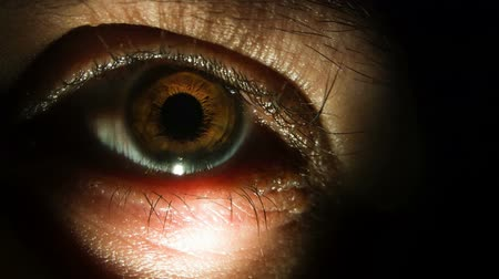 avelã : Disgustingly close-up view of eye lit by a flashlight in total darkness Stock Footage