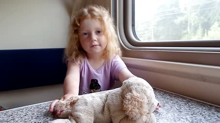 Beautiful little girl playing with dog toy in front of train window
