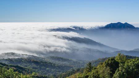morning : timelapse beautiful mist flowing over valley at doi inthanon national park of chiang mai, thailand Stock Footage