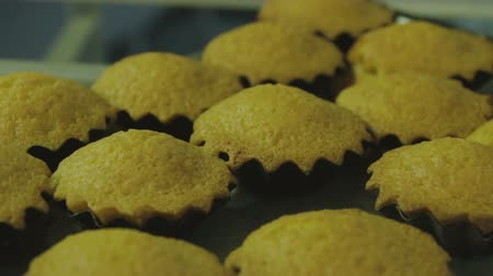 scones : Ready-made cakes Stock Footage
