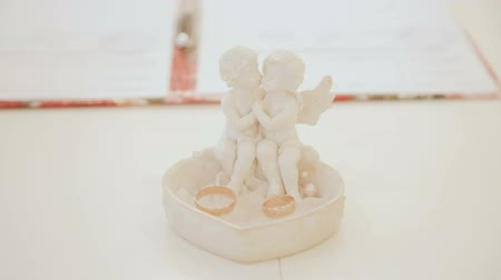 platina : Wedding rings on the table kittens to each other Vídeos