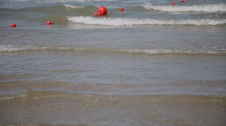 sporty zimowe : Sea waves swim ashore on a sunny day.