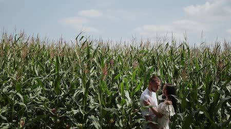 ősz : Loving couple each other standing in a corn field hugging and kissing. Stock mozgókép