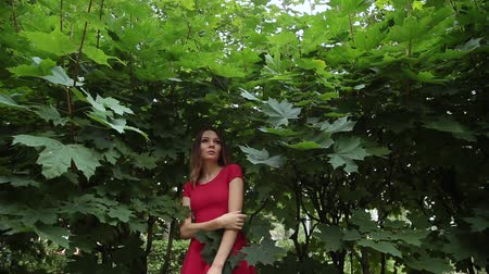 okşayarak : A girl in a fashionable red dress is standing in the forest bushes and stroking herself. Stok Video