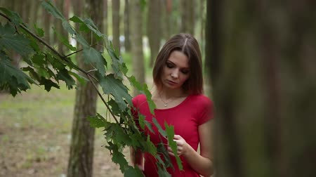 növénytan : A very beautiful girl gently touches the leaves of a tree.