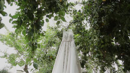 dangle : White wedding dress hanging on a green tree, white bridesmaid dress hanging among the branches of a tree.