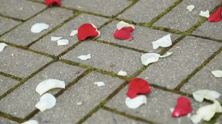 nostalgisch : Flower petals on the floor at a wedding ceremony