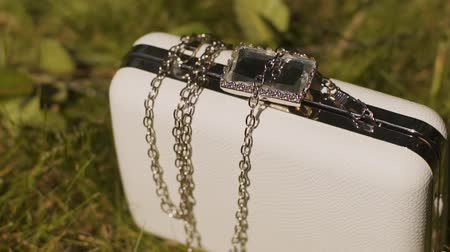 kavrama : Beautiful white feminine clutch lying on green grass.