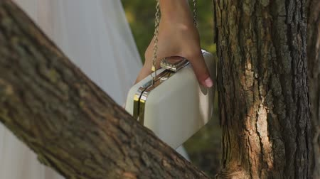 аксессуары : Beautiful white female clutch hanging on the tree. Стоковые видеозаписи