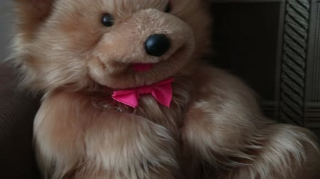 ぬいぐるみの : teddy bear with a red bow sitting on the couch. 動画素材