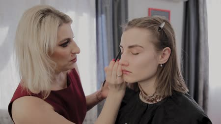 cienie do powiek : Makeup artist applies professional makeup to a beautiful young girl. New concept in makeup. Wideo