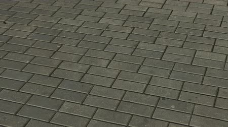 godo : Gray paving tiles on the street.