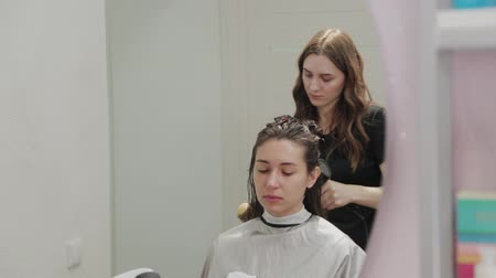 kurutma : Girl hairdresser dries hair to client with hairdryer at hairdresser. Stok Video