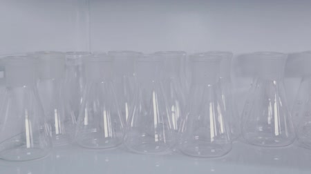 farmacologia : Glass test tubes in a science laboratory.