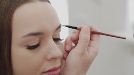 makijaż : Professional makeup artist woman stirs makeup cream on a palette. Wideo