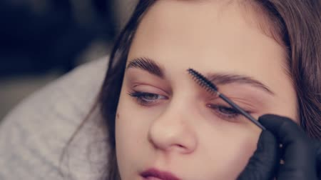 tatuagem : Professional master eyebrow woman combing eyebrows to client in a beauty salon. Stock Footage