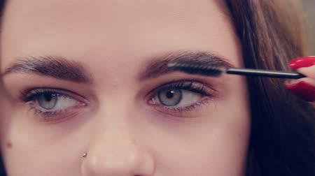 brow : Professional master eyebrow woman combing eyebrows to client in a beauty salon. Stock Footage