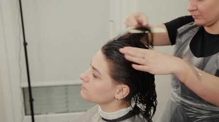 combing : Professional hairdresser woman doing hairstyle on wet hair to client. Stock Footage