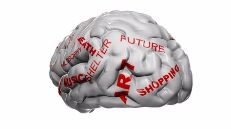 pensamento : Brain labeled with some thoughts and ideas. Loops. Stock Footage