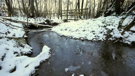 palce : A small footbridge over a stream which is partly frozen. The bridge is in a wood. There is about three inches of snow. Dostupné videozáznamy