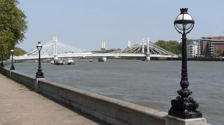 londra : Albert Bridge over the Thames near Battersea. Stok Video