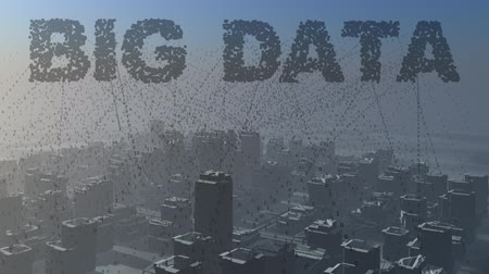 dane : Big Data.  Collecting data from a city.
