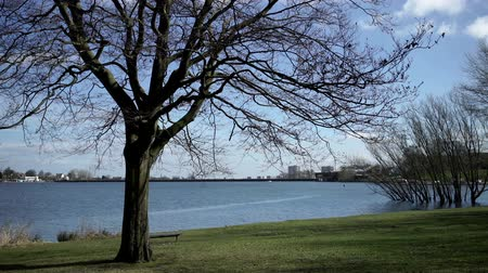 anglia : Edgbaston Reservoir in the centre of Birmingham, England.